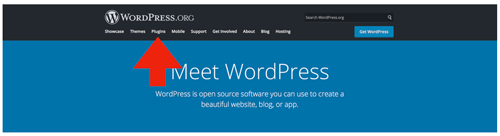 wordpress-review-1